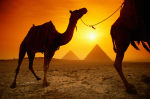 Guía de Turismo y Viajes por egipto